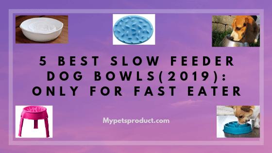 best slow feeder dog bowls