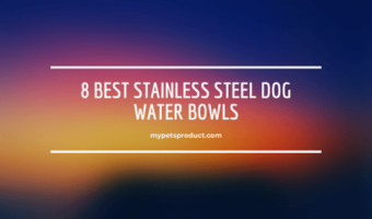 stainless steel dog water bowl