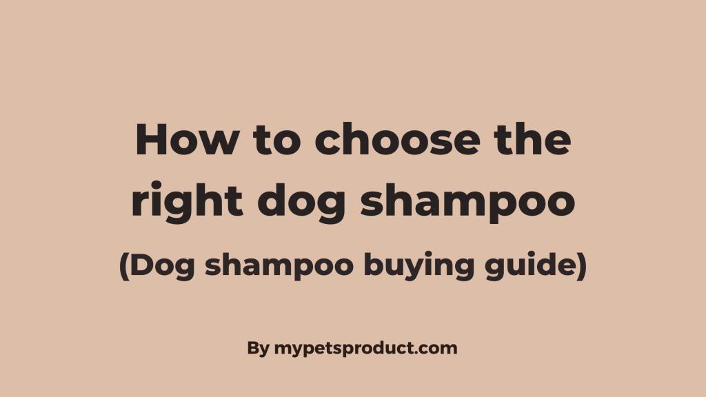 dog shampoo buying guide